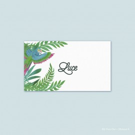 Marque-place perroquet (lot de 10 cartes)